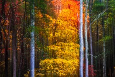 Fall effect