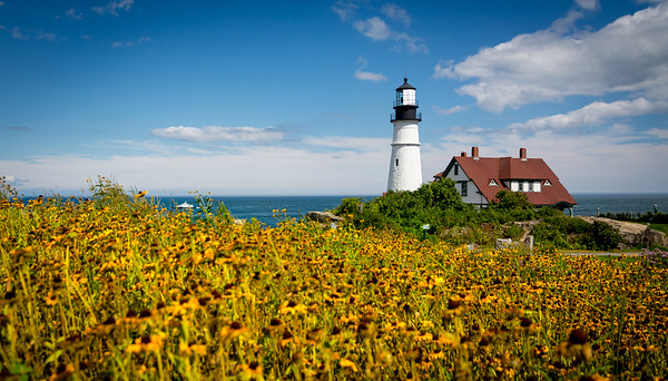 Portland Head Light and wild flowers