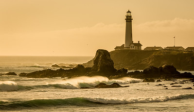 Pigeon Point on the coast