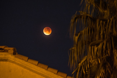 Blood Moon Eclipse II