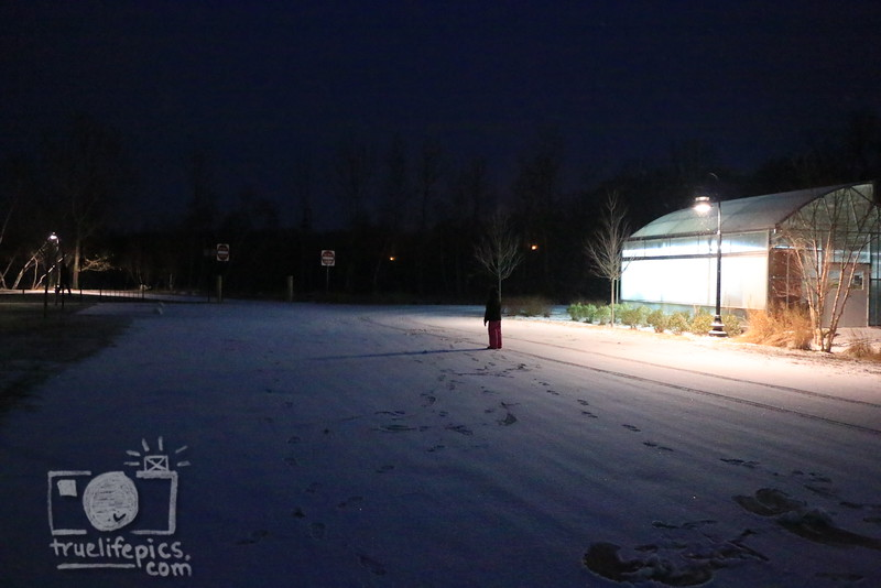 snow_0011
