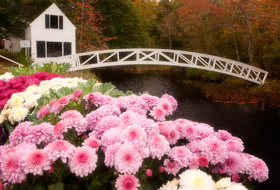 Arch Bridge in Somesville, Maine