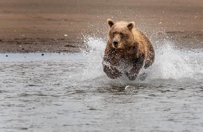 Lake Clark National Park, Alaska