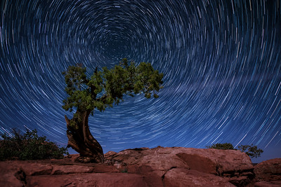 Star Trails, Dead Horse Point State Park, UT
