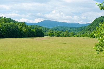 Pasture next to James River, Blue Ridge Parkway, VA (MP 63.6)