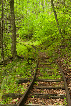 Old logging railroad tracks, Blue Ridge Parkway, VA (MP 34.4)