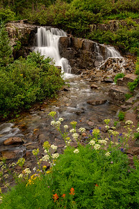 Twin Falls on Sneffels Creek