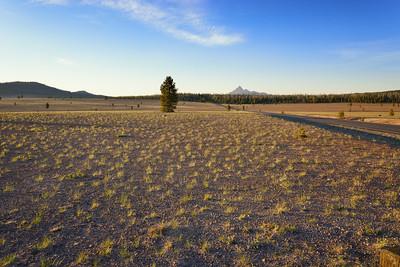 The Pumice Desert