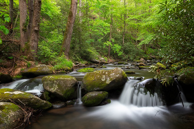 Roaring Fork, Great Smoky Mountains National Park