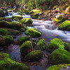 Mossy Boulders on Roaring Fork, Great Smoky Mountains National Park