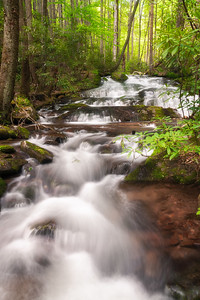 Chasteen Creek Falls, Great Smoky Mountains National Park