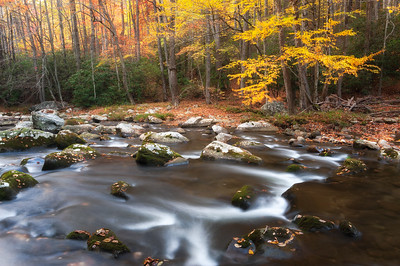 Autumn along the Little River, Great Smoky Mountains National Park