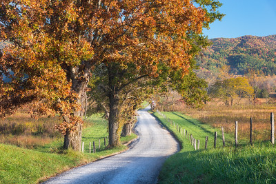 Hyatt Lane, Cades Cove, Great Smoky Mountains National Park
