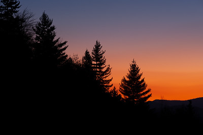 Dawn Silhouettes, Great Smoky Mountains National Park