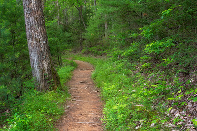 Rich Mountain Loop Trail, Cades Cove