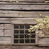 Cabin Window, Great Smoky Mountains National Park