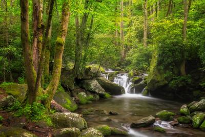 Cascade on Roaring Fork