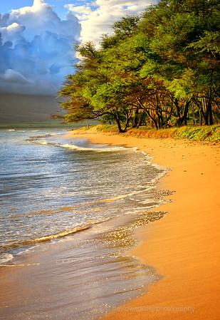 Maui Beach 3