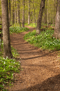 Aman Park, Ottawa County, Michigan