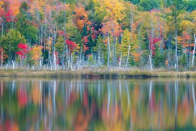 Red Jack Lake