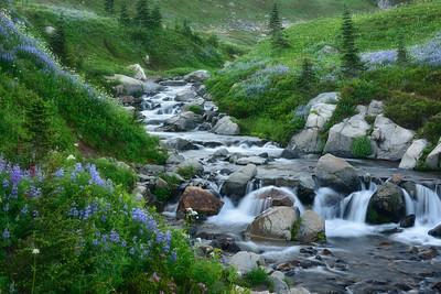 Edith Creek, Mount Rainier National Park