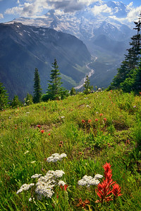 White River looking towards Emmons Glacier, Mount Rainier National Park