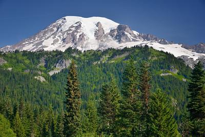 Mount Rainier from Stevens Canyon Road