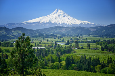 Mount Hood, Panoramic Point, Hood River, Oregon