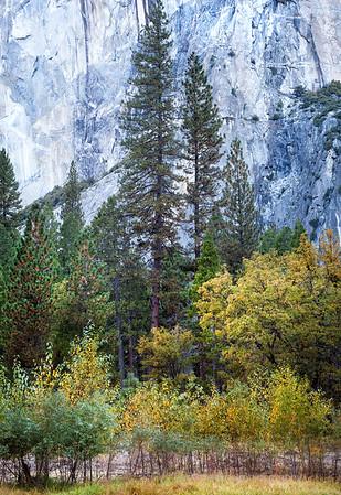 Valley Floor, Yosemite