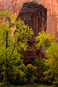The Pulpit, Temple of Sinawava, Zion National Park