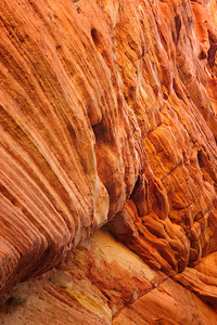 Canyon Wall, Zion National Park