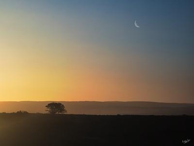 Amakhala Sunset