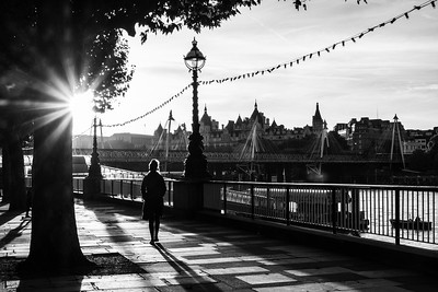 Evening on the South Bank