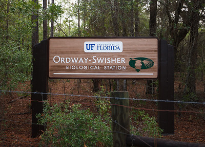 Ordway-Swisher Biological Station, Florida