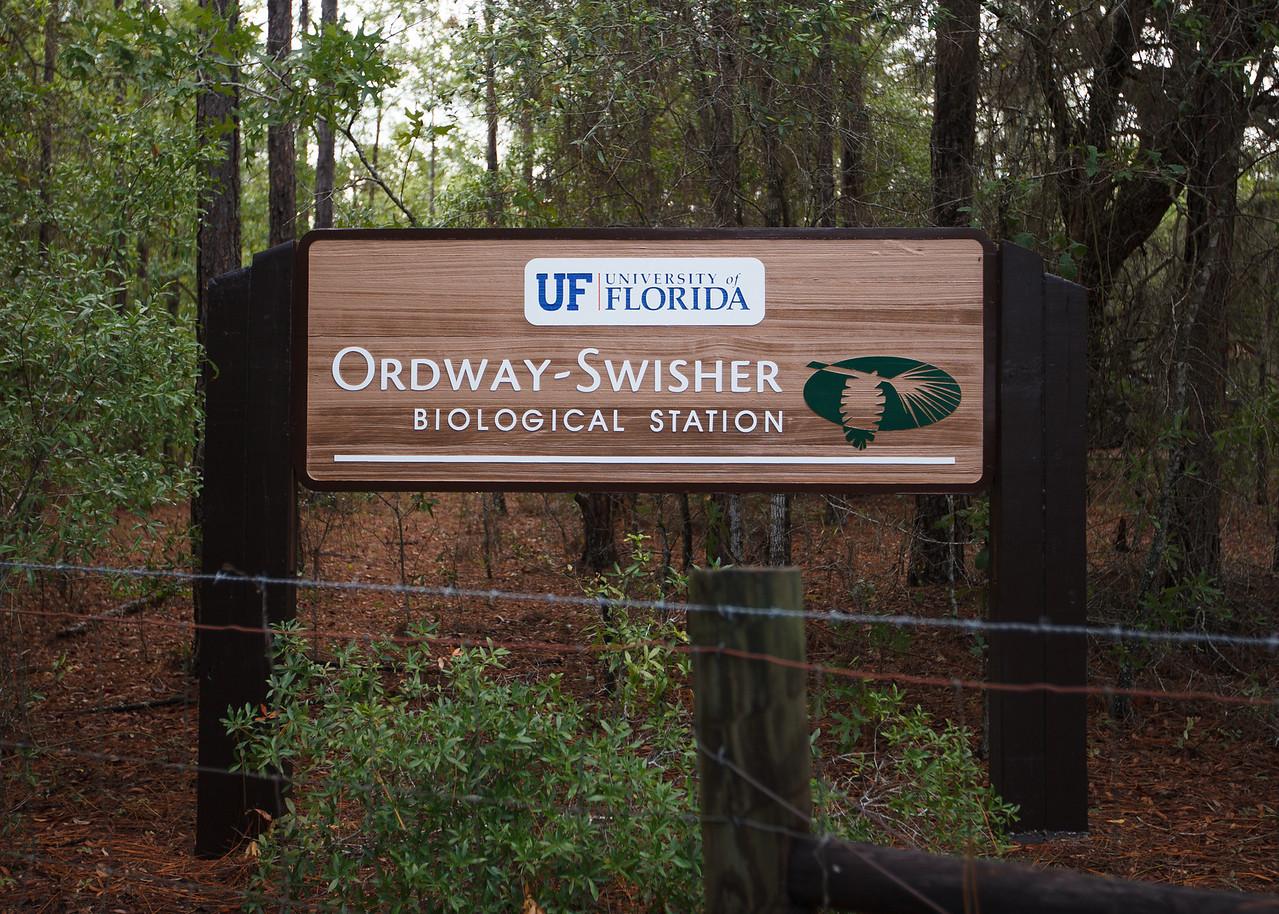 Ordway-Swisher Biological Station, Florida