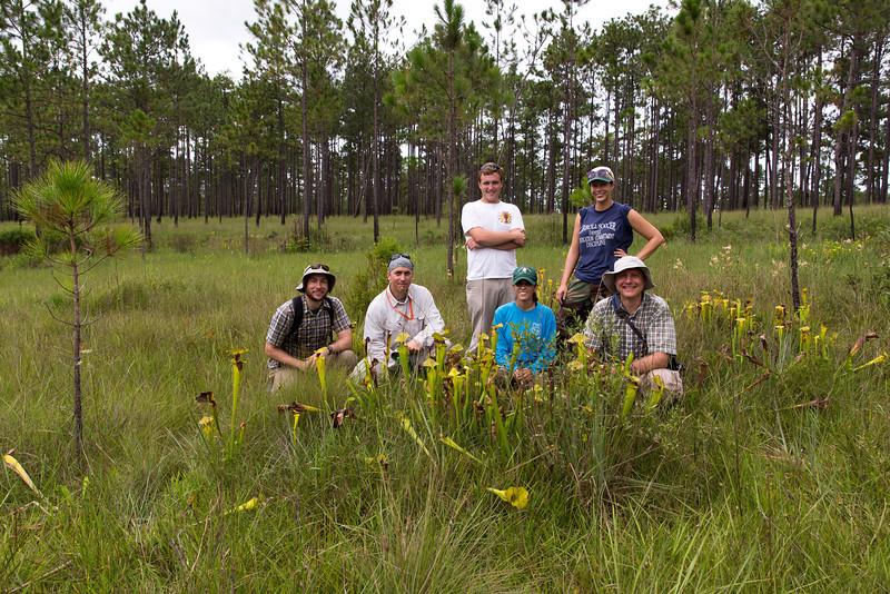 Longleaf Diversity, Dominance & Disturbance Project Team, August 2013, Eglin Air Force Base, Florida. Left to right: Jonathan Myers (Ass't. Prof., Washington U.), Paul Gagnon (Ass't Prof., Murray State U.), Cory Groover (Graduate Student, Murray State U.), Christina Mahmood (Technician), Amanda Briant (Technician), Kyle Harms (Prof., Louisiana State U.). Not pictured: Katherine Hovanes (Graduate Student, Louisiana State U.), Whitney Wallet (Graduate Student, Murray State U.).