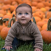 My nephew Griffin, posing with pumpkins at the Missouri Botanical Garden in St. Louis, MO.