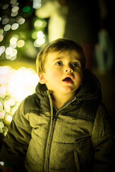 My nephew Griffin at the Missouri Botanical Garden during the Garden Glow.
