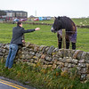 Meeting Whitby Locals; Local Unimpressed
