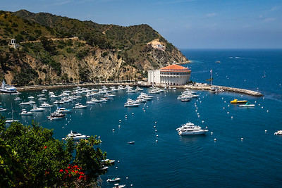 The harbor at Santa Catalina Island, California.  A good place to be a yacht broker, or a boat mechanic.