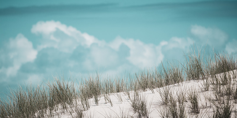 LOVELY LEWES & DELAWARE BEACHES