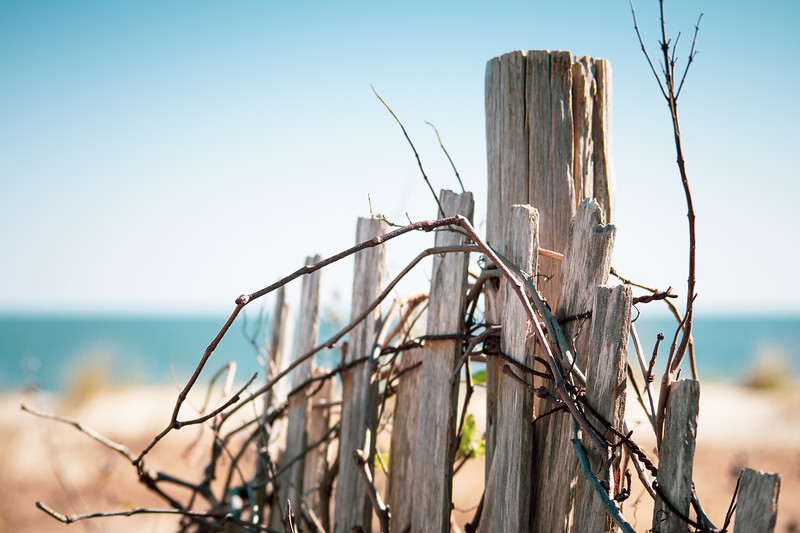 Rehoboth Beach Fence and Ocean View