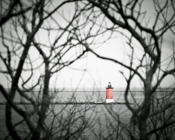 Delaware Breakwater Lighthouse Through the Trees, Selective Color