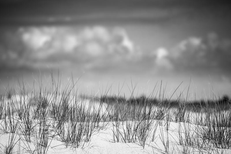 Dune, Grass, Sky, Clouds, BnW