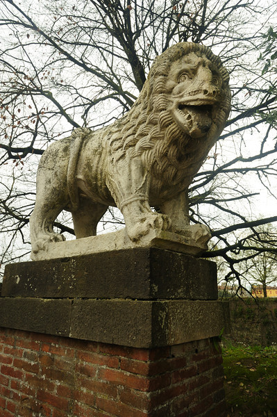 12th century Lion guards Lucca wall