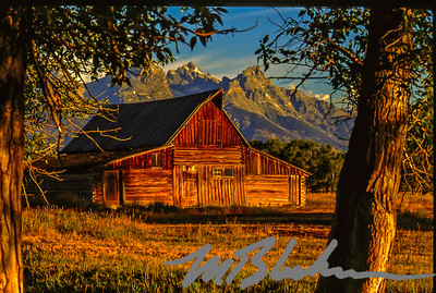 T.A. Moulton Barn at the Tetons