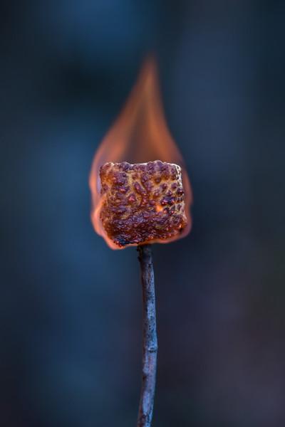 """Campfire Cuisine"""