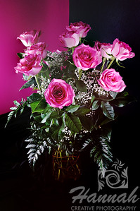Two Dozen Pink Roses on a Vase