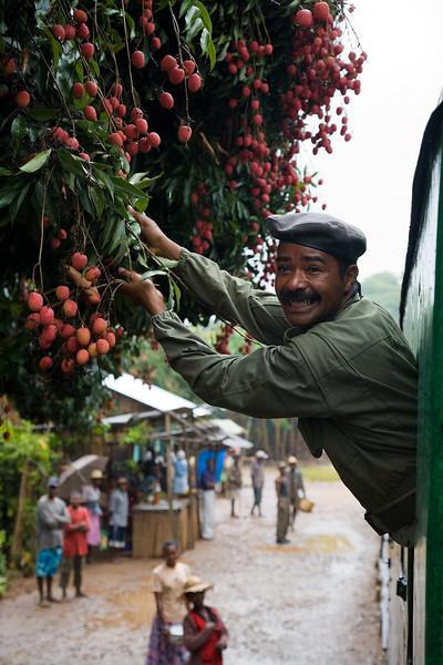 Policeman stealing lychees / Madagascar