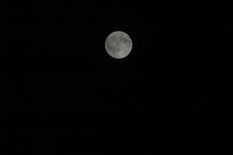 December 2010 Lunar Eclipse - 1